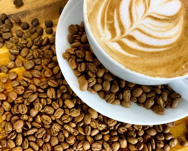 northside coffee, always fresh roasted coffee